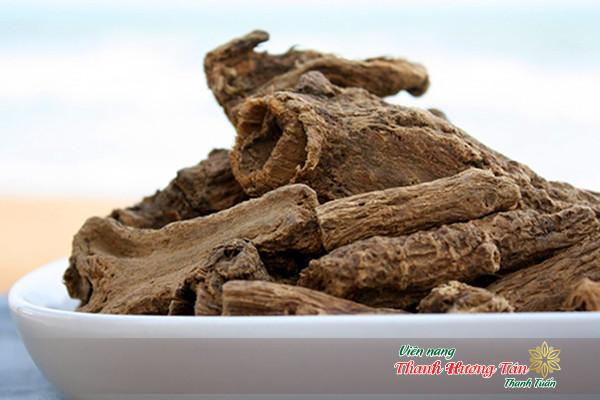 Mộc hương dùng trong trường hợp đau bụng, nôn mửa.