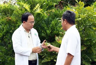Lương y Thanh Tuấn người bào chế giải pháp chuyên biệt điều trị hôi miệng từ dạ dày.
