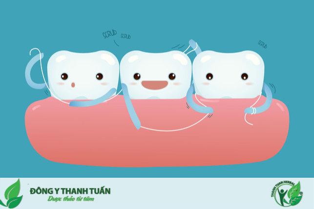 chỉ nha khoa sạch răng thơm miệng